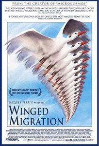 winged_migration